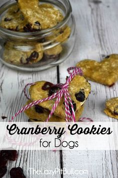 Heart Shaped Cranberry Cookies for Dogs