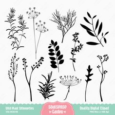 Wild Plant Silhouette Digital Clipart by SSGARDEN on Etsy