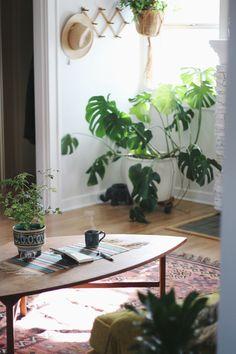 Pad Peek: Anna's Experimental Vintage Boho Home (Justina Blakeney - The Jungalow) Bohemian House, Slow Living, Interior Design Tips, Indoor Air Quality, Modern Boho, Indoor Plants, Fake Plants, Green Plants, Home Decor Inspiration