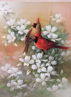 """Cardinal and Dogwood 1"" by T.C. Chiu"