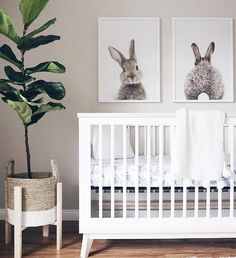 Baby room themes for girls animals nursery decor Best Ideas - Top Trend Pin Baby Room Themes, Baby Room Diy, Baby Bedroom, Nursery Themes, Nursery Ideas, Room Ideas, Bunny Nursery, Baby Nursery Decor, Girl Nursery