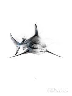 Shark 2 Kunst van Alexis Marcou bij AllPosters.nl