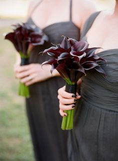 calla lily bouquets for bridesmaids? simple calla lily boutonniere for the bridesmen? Calla Lillies Bouquet, Calla Lily Boutonniere, Purple Calla Lilies, Purple Bouquets, Sunflower Bouquets, Bridesmaid Bouquet, Wedding Bouquets, Wedding Flowers, Wedding Bride
