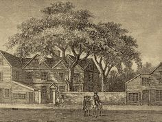 How an Elm Tree Helped Win America's Independence