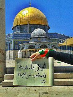 الجزائر - فلسطين