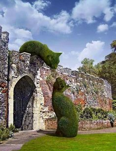 Topiary. ..Cats