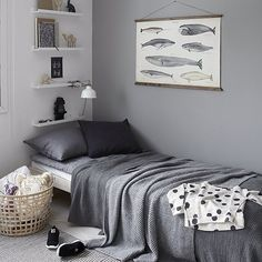 Ikea 'Ribba' picture ledges in grey bedroom