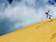 Book your sandboarding trip today with SA Forest Adventures in Hermanus, South Africa - Dirty Boots Whale Watching Season, Forest Adventure, Adventure Activities, Amazing Adventures, Great View, Rafting, South Africa, Trips, Knysna