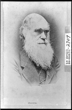 Plenty of people claim to know what Charles Darwin thought or said, but here are five common misconceptions or myths about him. Charles Darwin, Robert Darwin, Kate Hudson, Theory Of Evolution, Human Evolution, Read Aloud Books, Old Portraits, Thing 1, Portrait