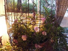 A birdcage lantern embellished with johnny jump up plants and moss-perfect for a back porch over a table-featured at Spring open house
