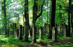 Jüdischer Friedhof am Eichelberg