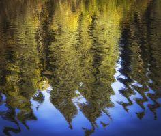 Denali National Park in Alaska  (Photo credit Thinkstock)