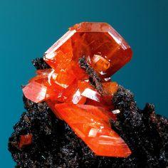 Wulfenite from Red Cloud Mine, Silver District, Trigo Mts., La Paz Co., Arizona, USA / Mineral Friends <3