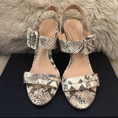 Dressbe   Sandália Luiza Barcelos #sandália #shoes #moda #sapatos #luizabarcelos #animalprint #moda #fashion