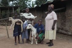 This story makes my heart smile. One of my goat friends was given to this grandmother and her 12 HIV+ grandchildren, and she actually helped pull this family out of poverty! You'll have to read it to believe it. Baa baaaaaa!