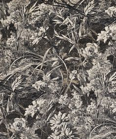 Royal Daisy Cotton Velvet in Velvet Pewter | Nesfield Collection by Liberty Art Fabrics – Interiors | Liberty.co.uk