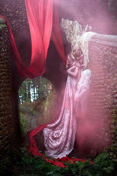 Wonderland : The Briar Rose by Kirsty Mitchell, via Flickr