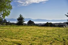 ***SOLD***  WATER VIEW HOME - San Juan Island.   25+/- acres with distant views across San Juan Valley to Haro Strait and the Olympic Mountains.  The land is a mix of pasture and woods with a western exposure. The house is dated but rentable, the setting is ideal, and the location is only a few miles from town. MLS#450245  $420,000.  ***SOLD***    www.SamBuck.com