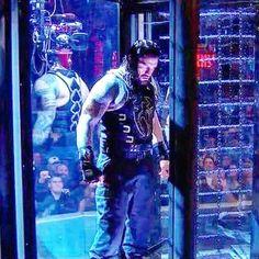 Roman Reigns Shield, Wwe Roman Reigns, Roman Reigns Wwe Champion, Wwe Superstar Roman Reigns, Beautiful Joe, Roman Regins, Nxt Divas, Wwe World, Wwe Champions