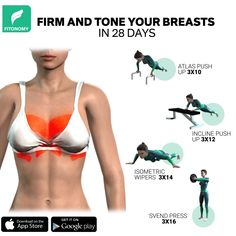 Fitness Workouts, Gym Workout Videos, Gym Workout For Beginners, Fitness Workout For Women, Full Body Gym Workout, Back Fat Workout, Starter Workout Plan, Exercise To Reduce Hips, Workout Programs