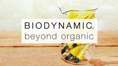 Biodynamics Main Blog Image