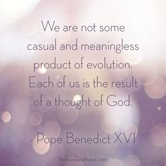 We are not some casual and meaningless product of evolution... Pope Benedict XVI - theloveliesthour.com