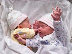 See how fraternal twins develop inside the womb
