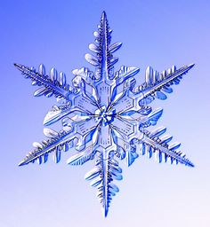 Flocon de neige, que c'est beau! www.snowcrystals.com