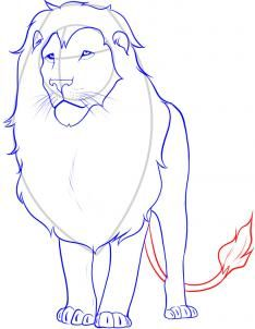 how to draw a lion step 12