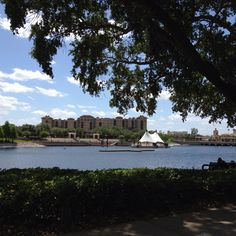Cranes Roost - Beautiful and relaxing Altamonte Springs, FL Altamonte Springs, Old Apartments, He's Beautiful, City Life, The Neighbourhood, Florida, River, Places, Pictures
