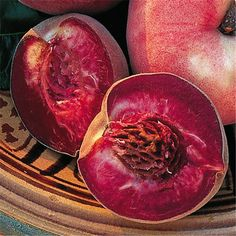 A rare hardy, low chill heritage peach cultivar that is leaf curl resistant and has a wonderful rich flavor. Known mainly now in New Zealand it Planting Vegetables, Fruits And Veggies, Veggie Recipes, Great Recipes, Veggie Food, Peach Trees, Exotic Fruit, Prunus, Edible Plants