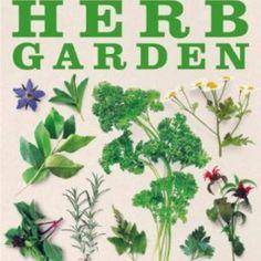 Book Review The Cook s Herb Garden