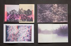 Interior pages from Retreat, 4 colour Risograph zine by Terrence Reeves. 2012
