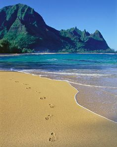 Makua Beach (a.k.a. Tunnels Beach), Kauai, Hawaii...amazing snorkeling here! been here and want to go back.
