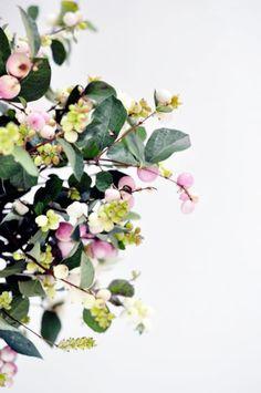 delicately lovely snowberries (photo by jacquelyn clark) via automatism . Green Flowers, My Flower, Beautiful Flowers, Deco Floral, Arte Floral, No Rain, Diy Weihnachten, Planting Flowers, Floral Arrangements
