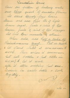An Irish Grandmother's recipe for Dandelion Wine from 1926