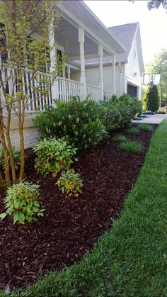 Landscape And Garden Design Cherry Laurels Front Yard Landscape Garden Front Yard is the perfect Hig Texas Landscaping, Front House Landscaping, Landscaping With Rocks, Outdoor Landscaping, Outdoor Gardens, House Landscape, Landscape Design, Garden Design, Porch Garden