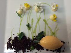 Eldeflower, carrot & parsley