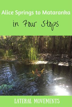 From Alice Springs to Mataranka in Four Stops: Lateral Movements Blog