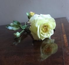 A Yellow Rose by Fiona Evans (Fifi's Cakes)