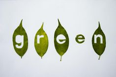 4 leaves, a knife, and Helvetica