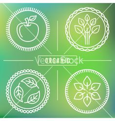 Organic icons vector by venimo on VectorStock®