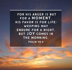 8 Encouraging Bible Verses About Comfort