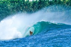 Julune : A Surf Dream In Indo // by Leah Dawson // A Sea Appreciation Pr...