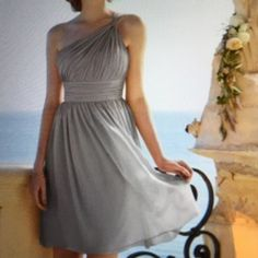 Weekend sale Watters Dress by WTOO size 6 WTOO gorgeous dress,color Taupe,One shoulder,shirred bodice,ruched midriff,above the knee length skirt,fabrics:crystal chiffon.Worn once, after dry cleaned,no any sign of wearing WTOO Dresses