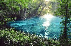 Ginnie Springs - Florida