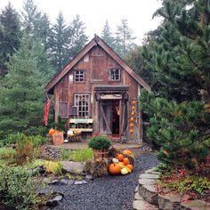 Pumpkin Hollow. Albany Oregon.
