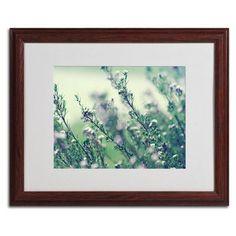 "Trademark Art ""Memories of Summer"" by Beata Czyzowska Young Framed Photographic Print Size: 1"