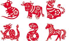 Zodiac expert reveals what the Chinese year of dog means | Daily Mail Online