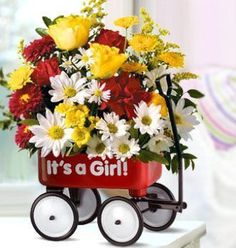 Roll out the welcome wagon from Beneva Flowers for the new baby girl!